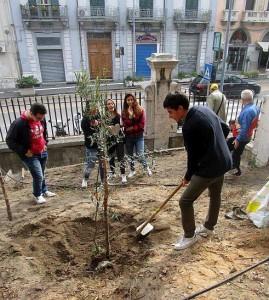 La Festa dell'Albero organizzata dal circolo dei Peloritani a Messina